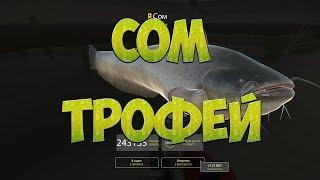 Русская Рыбалка 4: За СОМОМ #4/ФИНИШ/ Трофейный СОМ (74,8 кг)