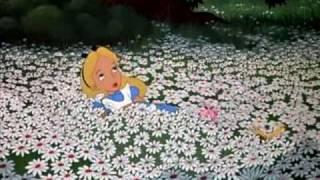 Pogo - Alice - Raining in Wonderland (Pogo Fan Music Video)