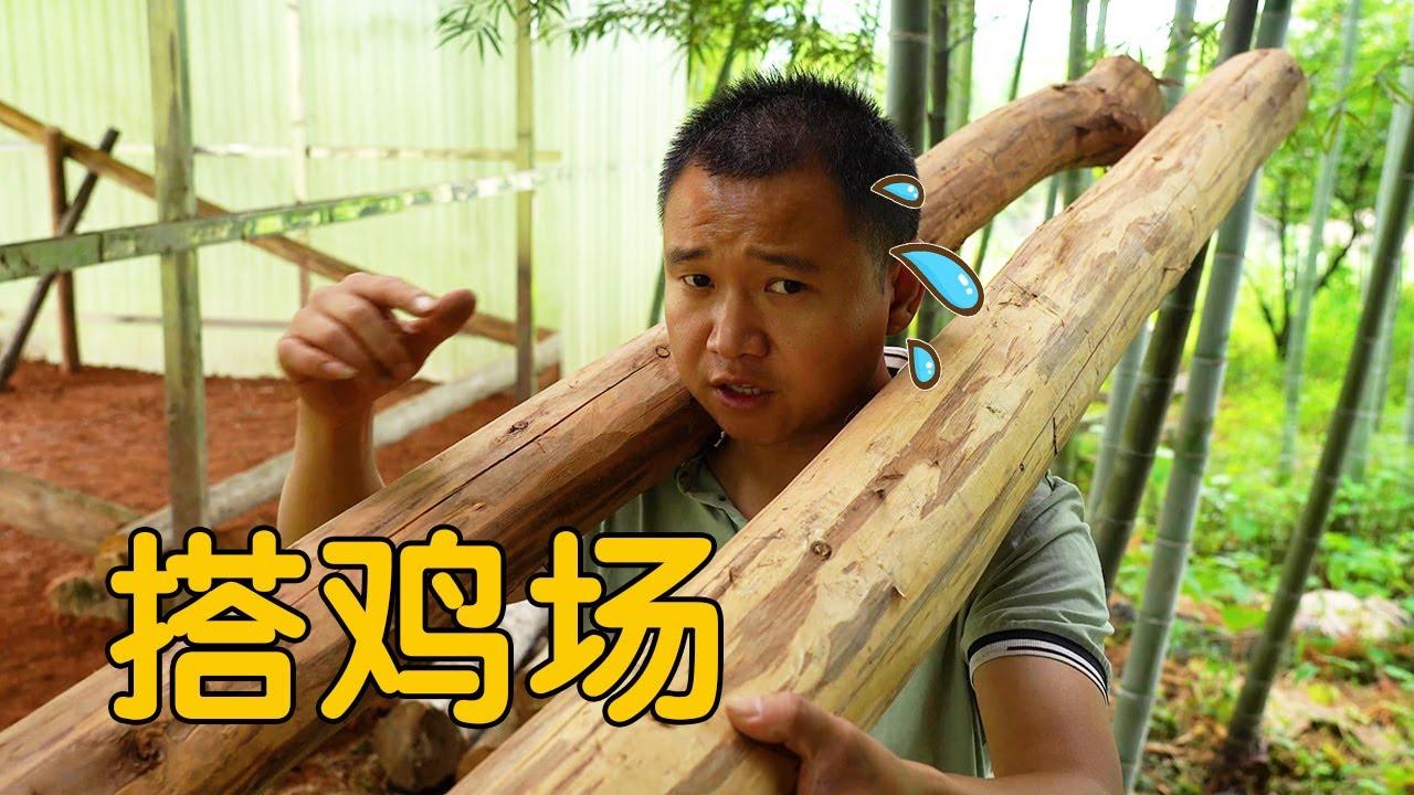 """【农村四哥】""""建筑师""""王爸独创设计鸡棚,农村四哥也忙前忙后,父子俩干的热火朝天"""