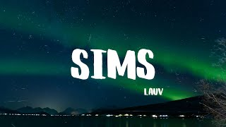 Cover images Lauv - Sims