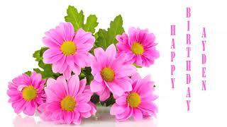 Ayden   Flowers & Flores - Happy Birthday