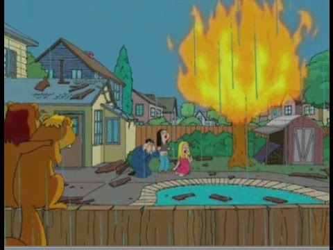 American Dad! The Treehouse Burns