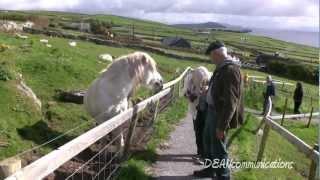 The Ring of Dingle - Ireland's Dingle Peninsula