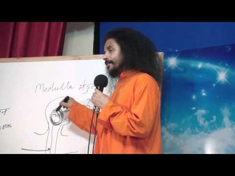 Kriyayoga - Understanding Medulla Consciousness