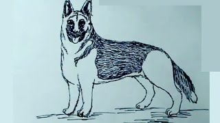 Aprende a dibujar perros 1/4 - Pastor aleman - How to draw a dog