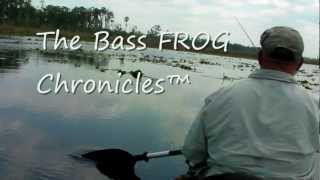 Finesse FROG Fishing on Calm Surface  Monster Bass