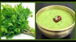 கொத்தமல்லி சட்னி செய்வது எப்படி? | How to make Kothamalli Chutney | South Indian Recipe