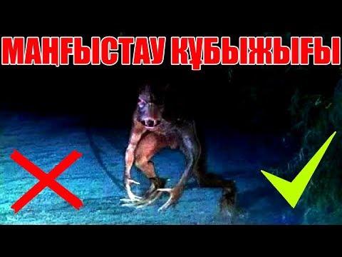 ЖАЛҒАН МӘЛІМЕТТЕР #10