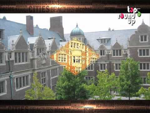 Top 5 Business Schools In the World