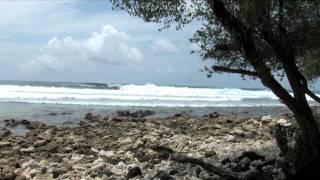Cokes Surf Camp, Maldives