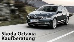 Kaufberatung Skoda Octavia III (Typ 5E): Was lohnt sich und was lohnt sich nicht [4K] - Autophorie
