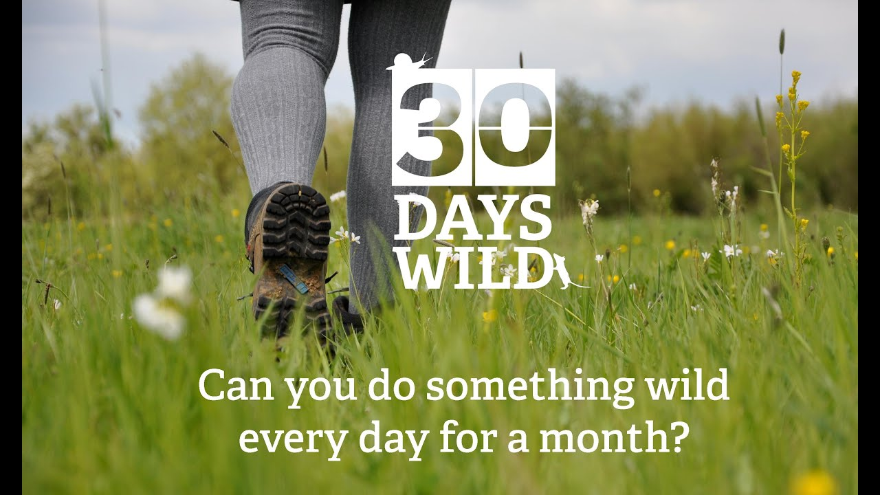 30 Days Wild - do something wild every day for a month! - YouTube