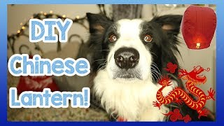 Chinese New Year! DIY Chinese Lantern tutorial for Chinese New Year - Year of the Dog! 🇨🇳🐶