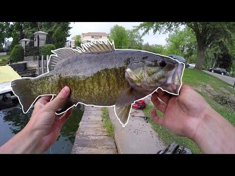Lake Geneva Smallmouth Bass — Marina Fishing