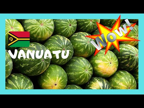 VANUATU, the graphic fruit and produce market of PORT VILA, PACIFIC OCEAN