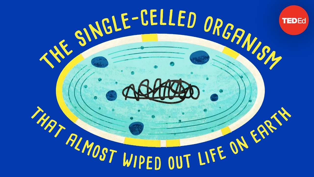One Celled Organism >> How A Single Celled Organism Almost Wiped Out Life On Earth