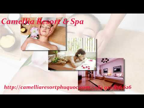 Camellia music- 0936826626
