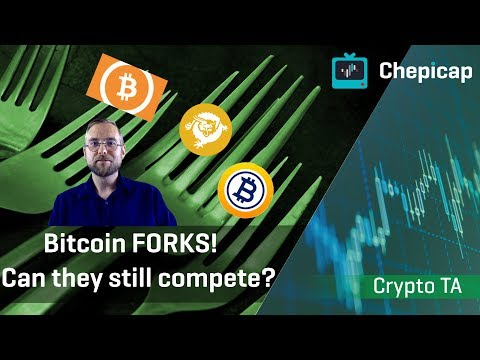 BCH, BSV And BTG! How Are The Major Bitcoin Forks Performing Today? | Cryptocurrency News | Chepicap