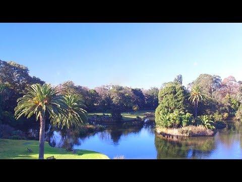Royal Botanic Gardens by Drone - Melbourne, Australia