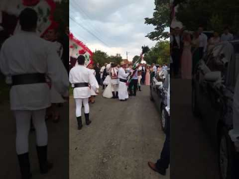 Nunta la bihor