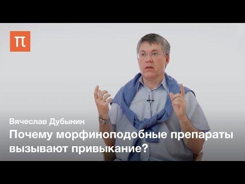 Мозг и боль — Вячеслав Дубынин