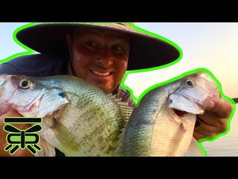 CRAPPIE FISHING BUCK CREEK, Lake Ray Roberts