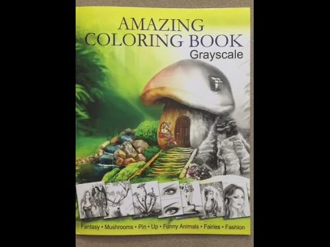 Amazing Coloring Book Grayscale For Grown Ups Adult Relaxation Flip Through