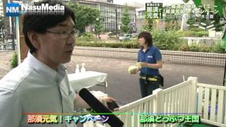 2011年7月19日に東京代々木公園ケヤキ並木通りにて ~那須は爽快 -...