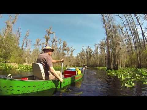 Bite Me Expeditions Okefenokee Swamp 2016