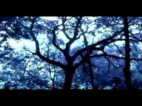 White Flight - Solarsphere *music video*