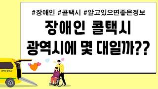 몰리-) 장애인 콜택시  몇 대 일까? (서울,인천,대…