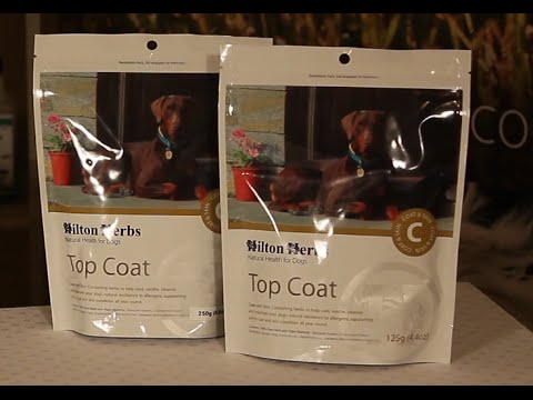 Top Coat - Herbal Coat and Skin Supplement for Dogs - Product Description