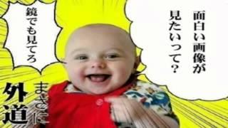 【作業用BGM】 盆回り 小一時間