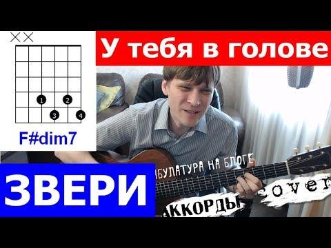 У тебя в голове Звери аккорды 🎸 под гитару Cover
