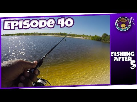 My First Time Fishing Saltwater - Things Get Rough! (Apollo Beach) - Fishing After 5