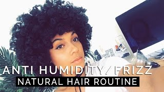 Anti Humidity/Frizz Natural Hair Routine  WASH DAY + 2 STYLES!