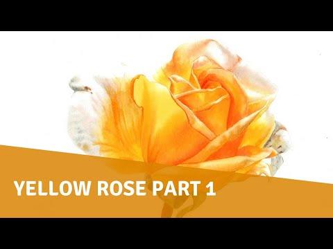 Watercolor Tutorial - Yellow Rose Part 1