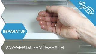 Aeg Kühlschrank Rückwand Vereist : Kühlschrank
