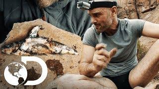 Pescando en el desierto de Bolivia | Ed Stafford al extremo | Discovery Latinoamérica
