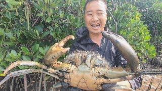"""玉平赶海抓到两斤多的青蟹,长这么大是""""成精""""了吗,看着都吓人"""