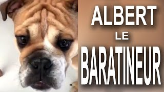 ALBERT LE BARATINEUR