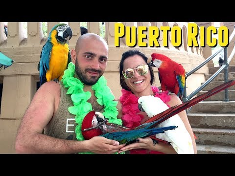 Day 6 CRUISE: Royal Caribbean cruise to Puerto Rico, snorkeling in puerto rico, CRUISE COUPLE VLOGS