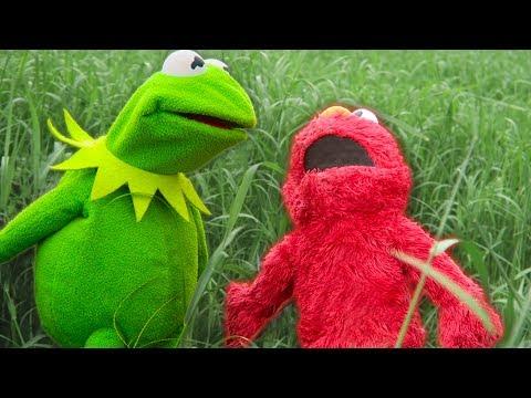 Kermit the Frog and Elmo's Backyard Challenge!
