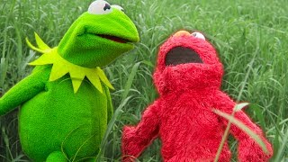 Kermit the Frog and Elmo's Backyard Challenge!