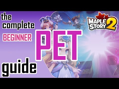 Maplestory 2: The COMPLETE PET GUIDE!