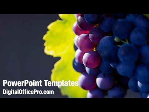 Wine grapes powerpoint template backgrounds digitalofficepro wine grapes powerpoint template backgrounds digitalofficepro 01231w toneelgroepblik Gallery