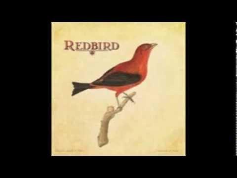 Buckets of Rain..Redbird..Dob Dylan (COVER)