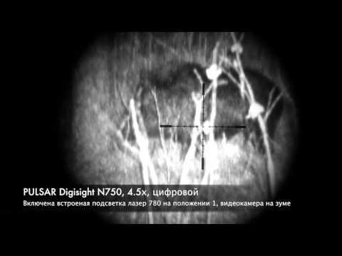 ТЕСТ ночных прицелов ПНВ всех поколений