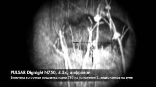 видео Цифровые прицелы ночного видения