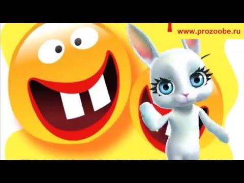 Поздравление с 1 апреля ♛♛♛ Смейся от души сегодня ♛♛♛ Поздравления от Зайки Домашней Хозяйки - Лучшие видео поздравления [в HD качестве]